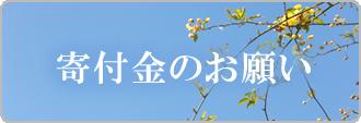 桐朋学園寄付金